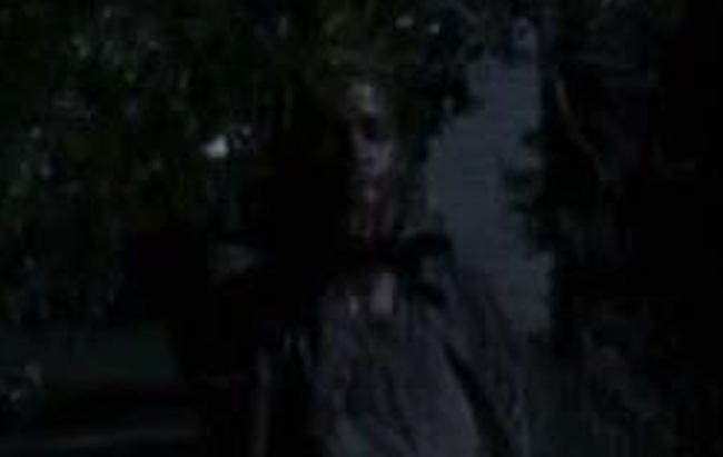Sean-The-Walking-Dead