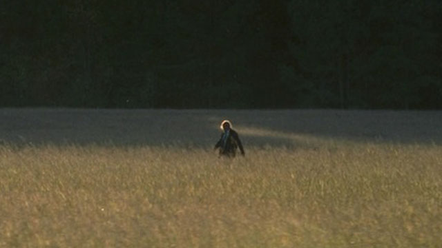 025 - lonely_zombie_the_walking_dead