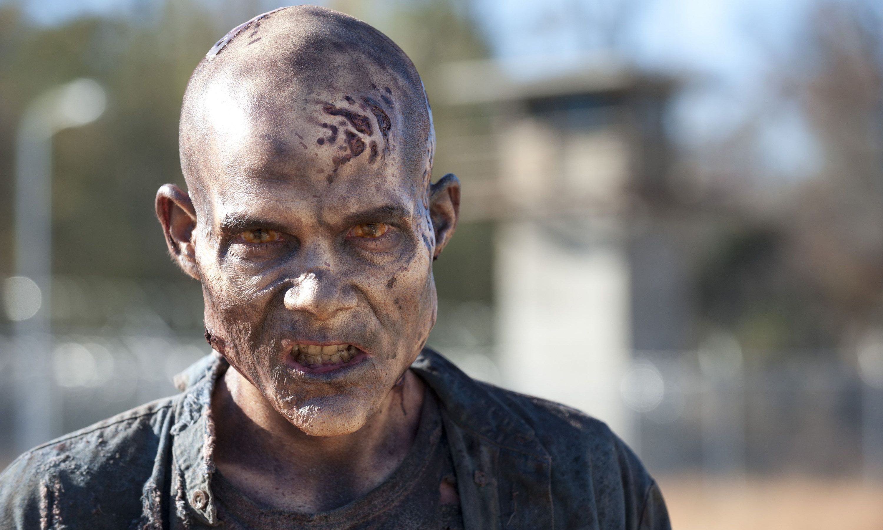 Walker - The Walking Dead - Season 3, Episode 16 - Photo Credit: Gene Page/AMC
