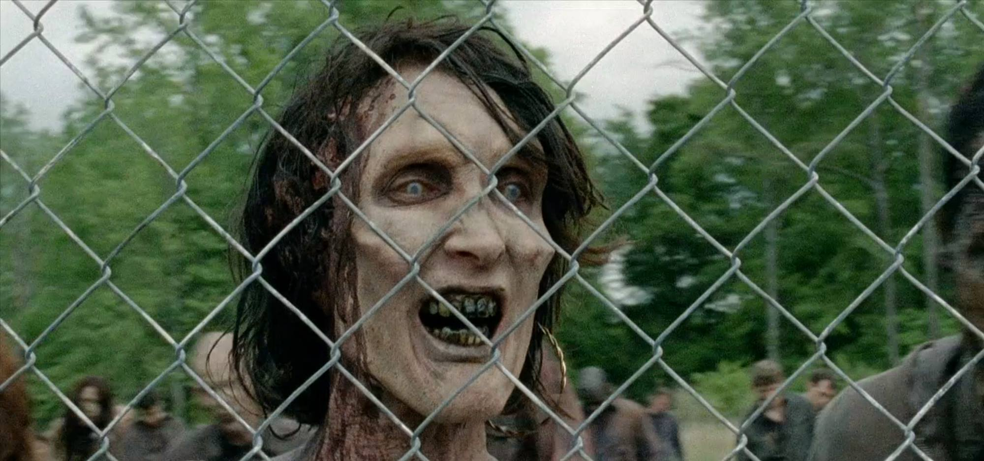 Walker - The Walking Dead Quarta Temporada