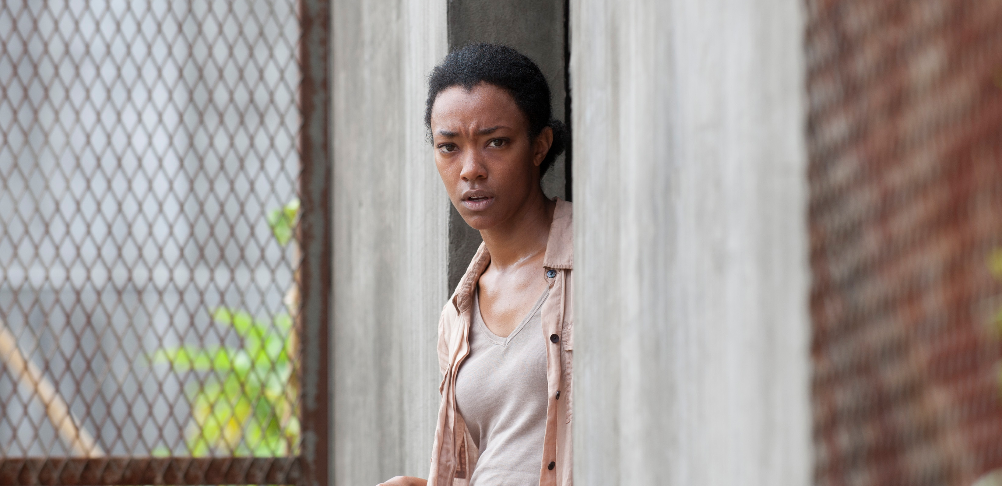 The-Walking-Dead-4-Temporada-Episodio-S04E03-Isolation-002