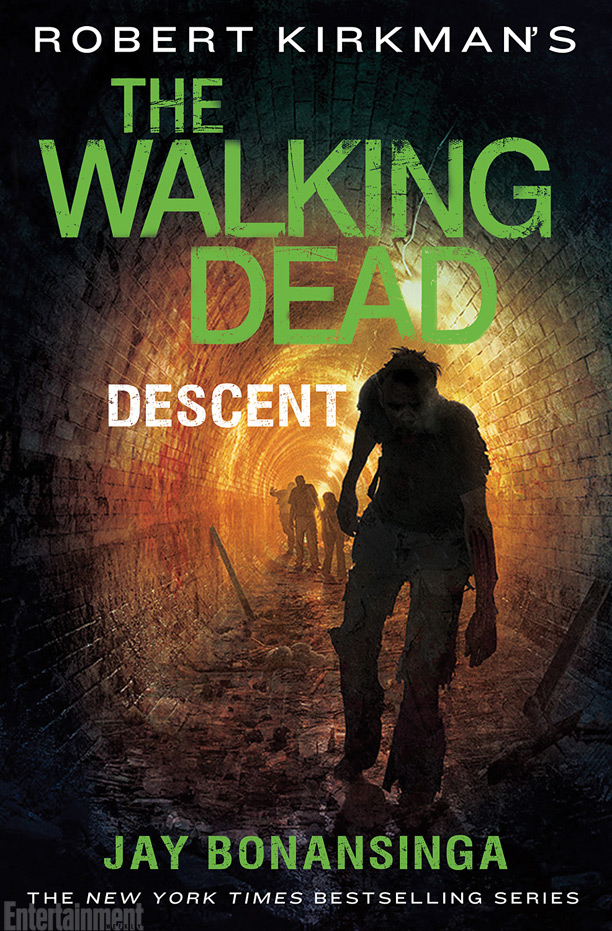 The-Walking-Dead-Descent-Livro-Capa