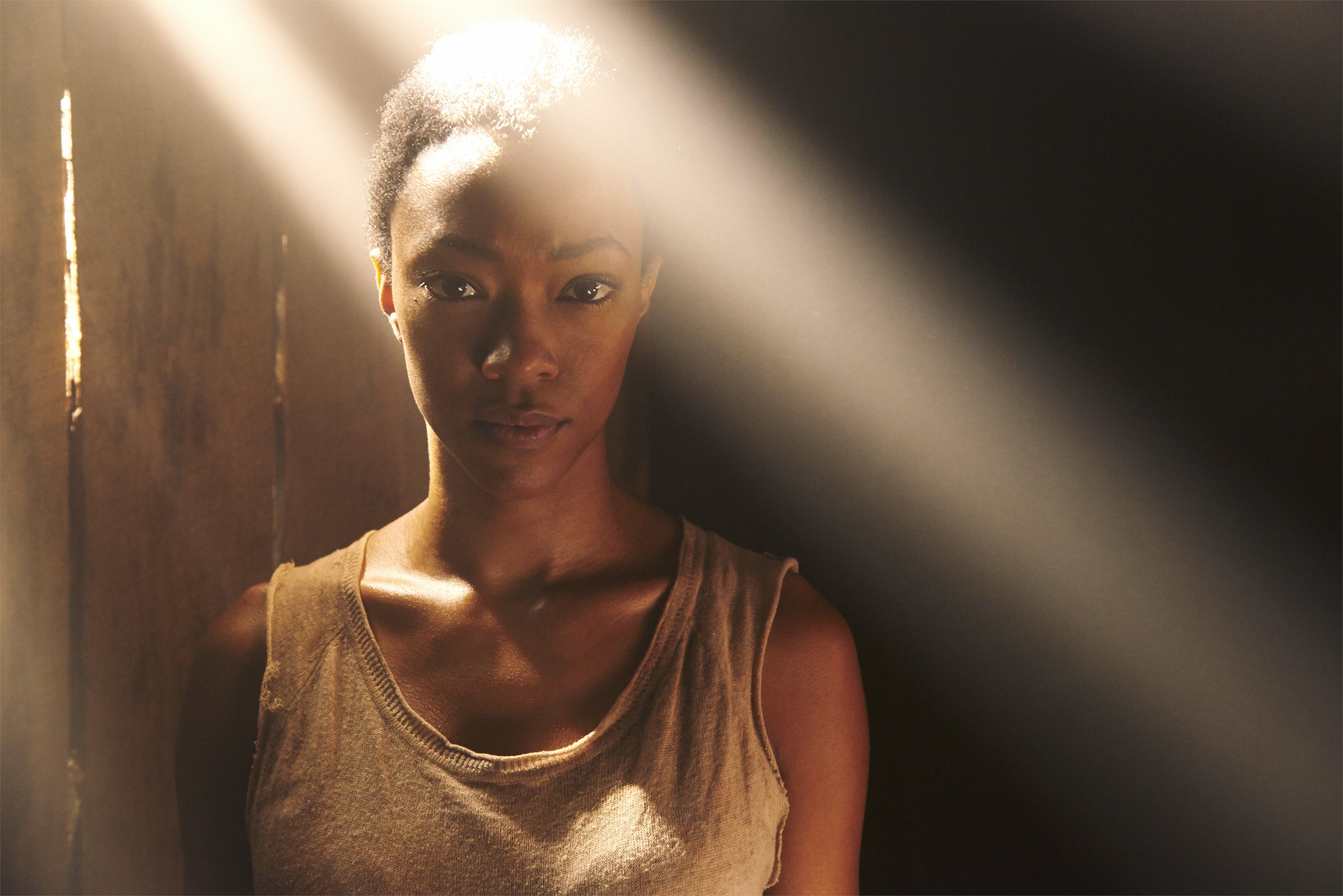 The-Walking-Dead-5-Temporada-Personagens-HQ-008