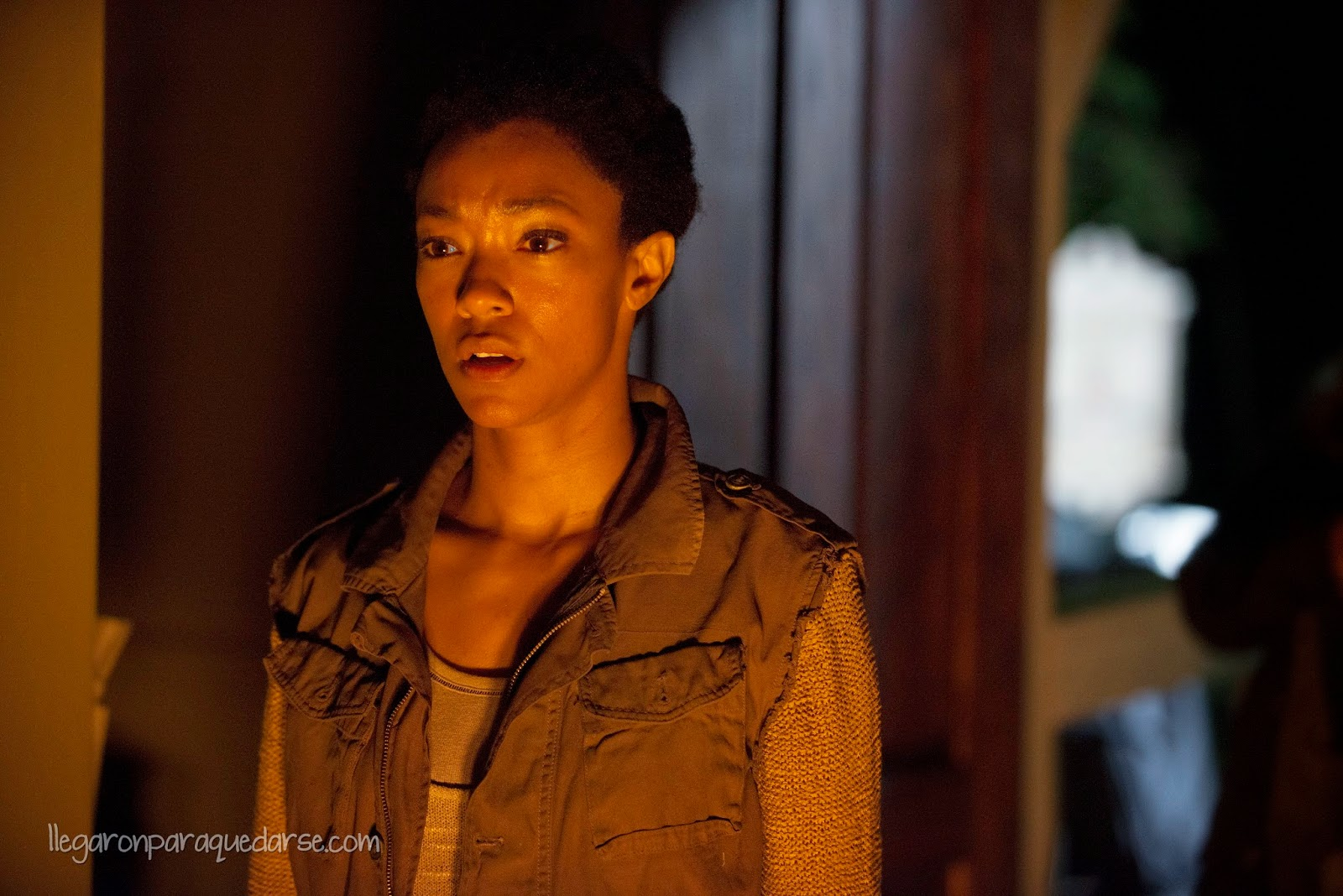 the-walking-dead-5-temporada-episodio-2-003