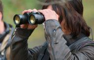 Revelado quem estava espiando Alexandria no 8º episódio da 7ª temporada de The Walking Dead?