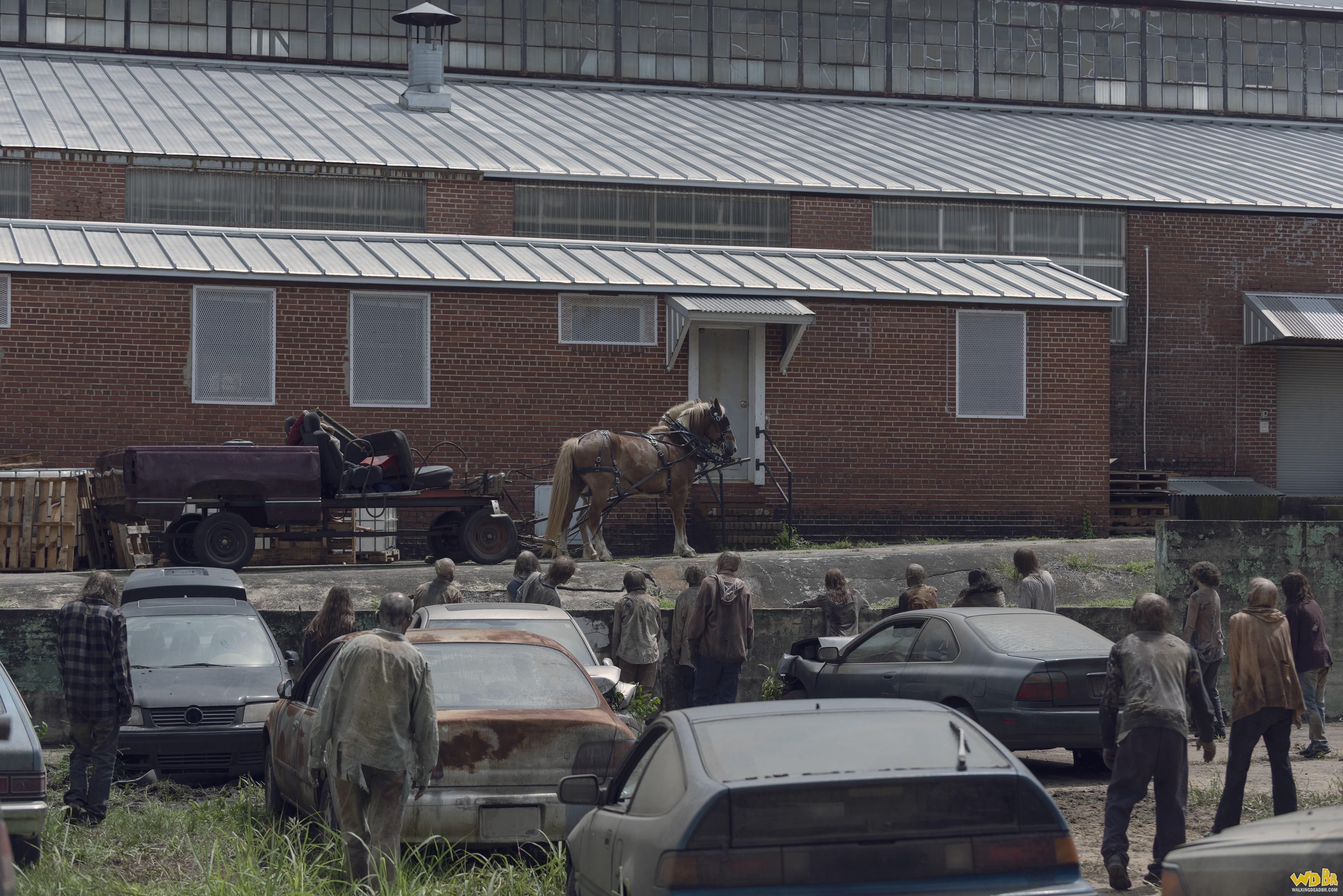 Horda de zumbis que invadiu o local onde Michonne e os outros passaram a noite