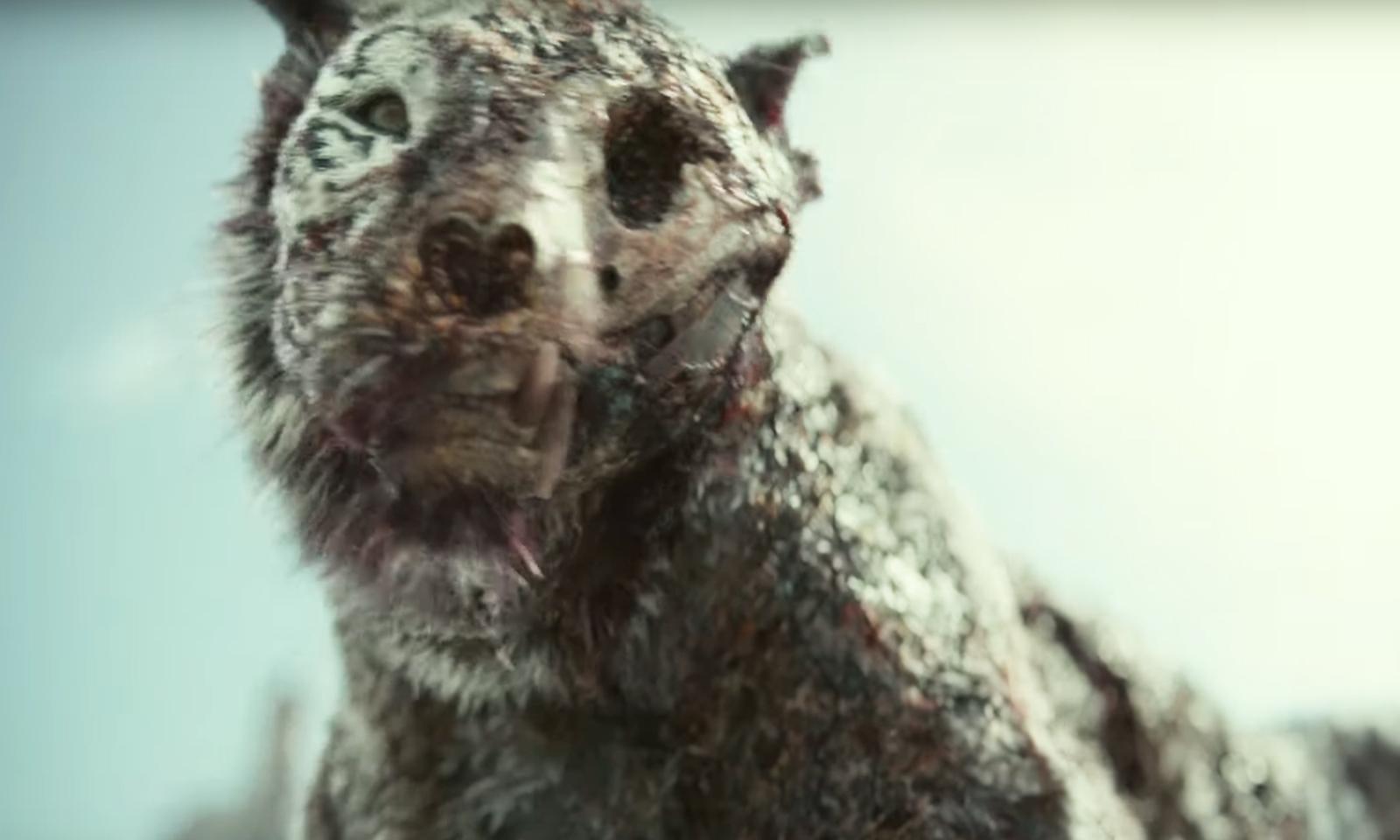 Tigre Zumbi no trailer do filme Army of the Dead